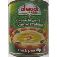 Al Wadi Al Akhdar Hummus